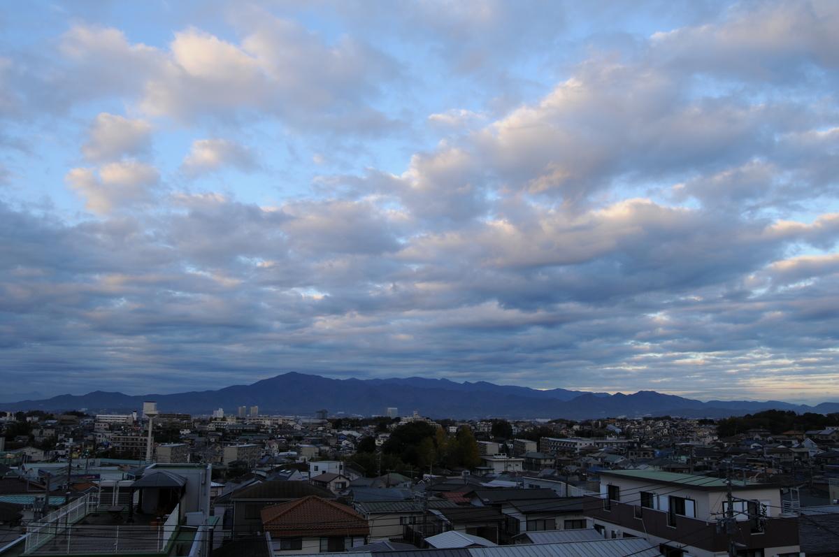 f:id:kumowasukidesuka:20210106185905j:plain