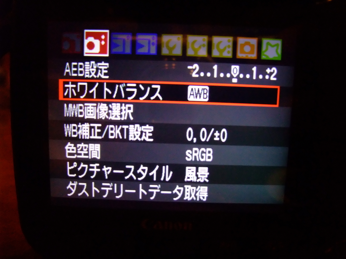 f:id:kumowasukidesuka:20210115230220j:plain