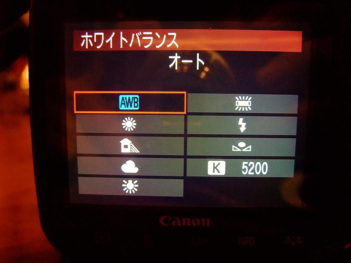 f:id:kumowasukidesuka:20210115230301j:plain
