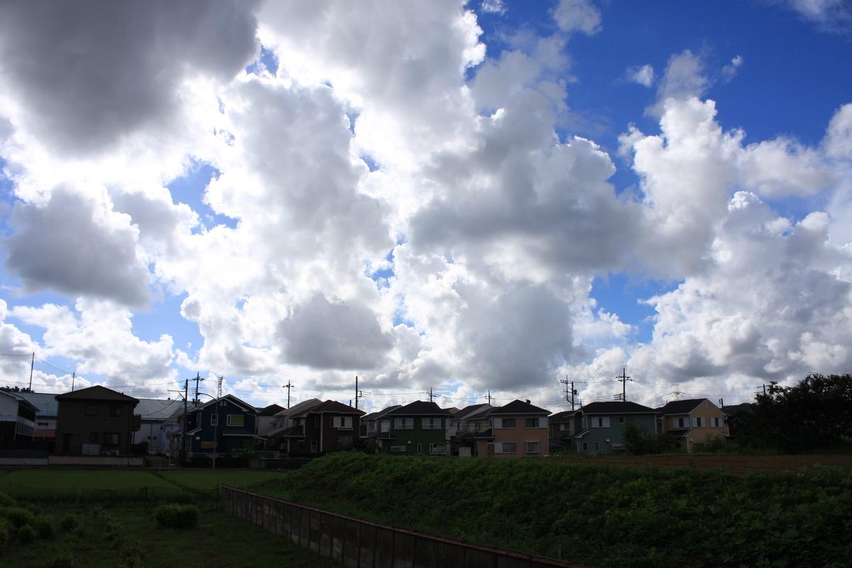 f:id:kumowasukidesuka:20210116110400j:plain