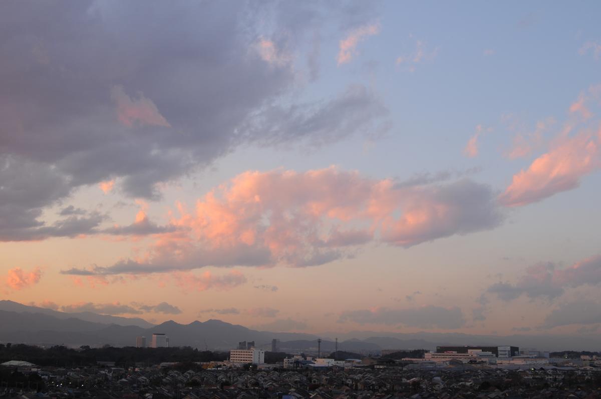 f:id:kumowasukidesuka:20210124202035j:plain