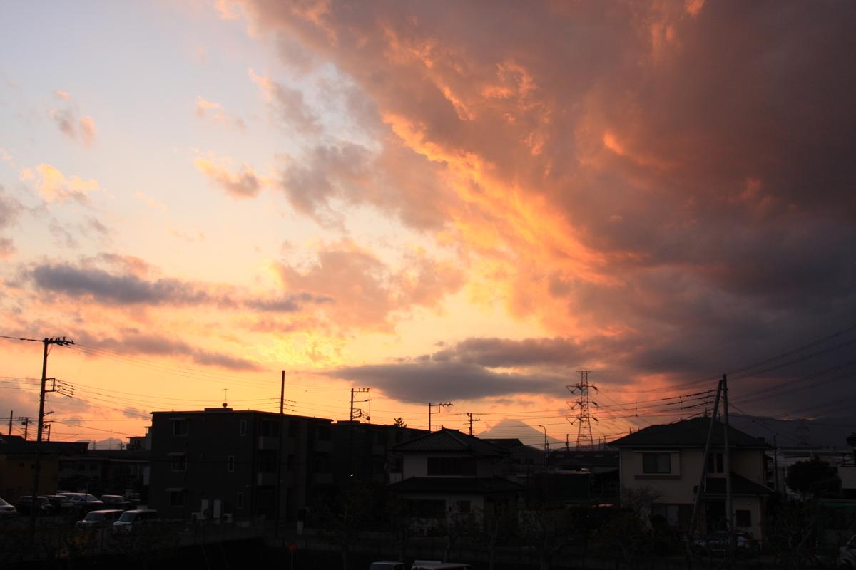 f:id:kumowasukidesuka:20210212215459j:plain
