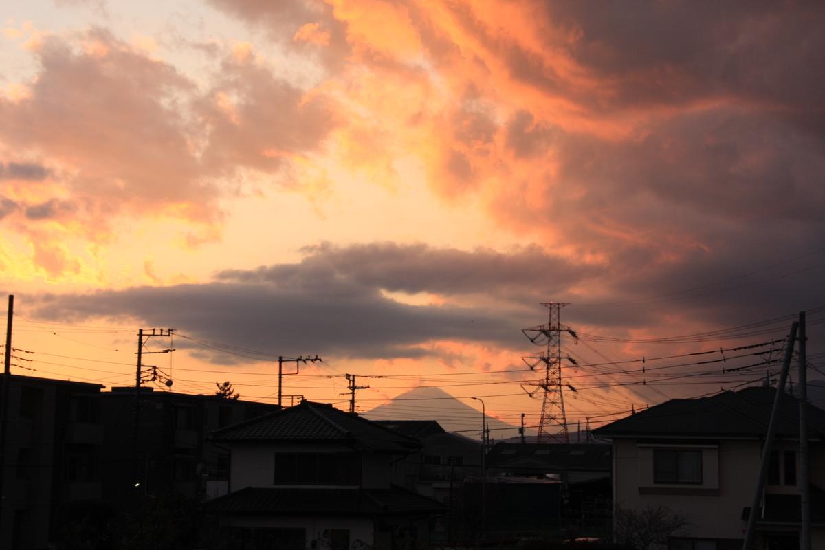 f:id:kumowasukidesuka:20210212215605j:plain