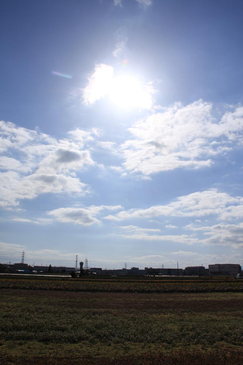 f:id:kumowasukidesuka:20210307172114j:plain