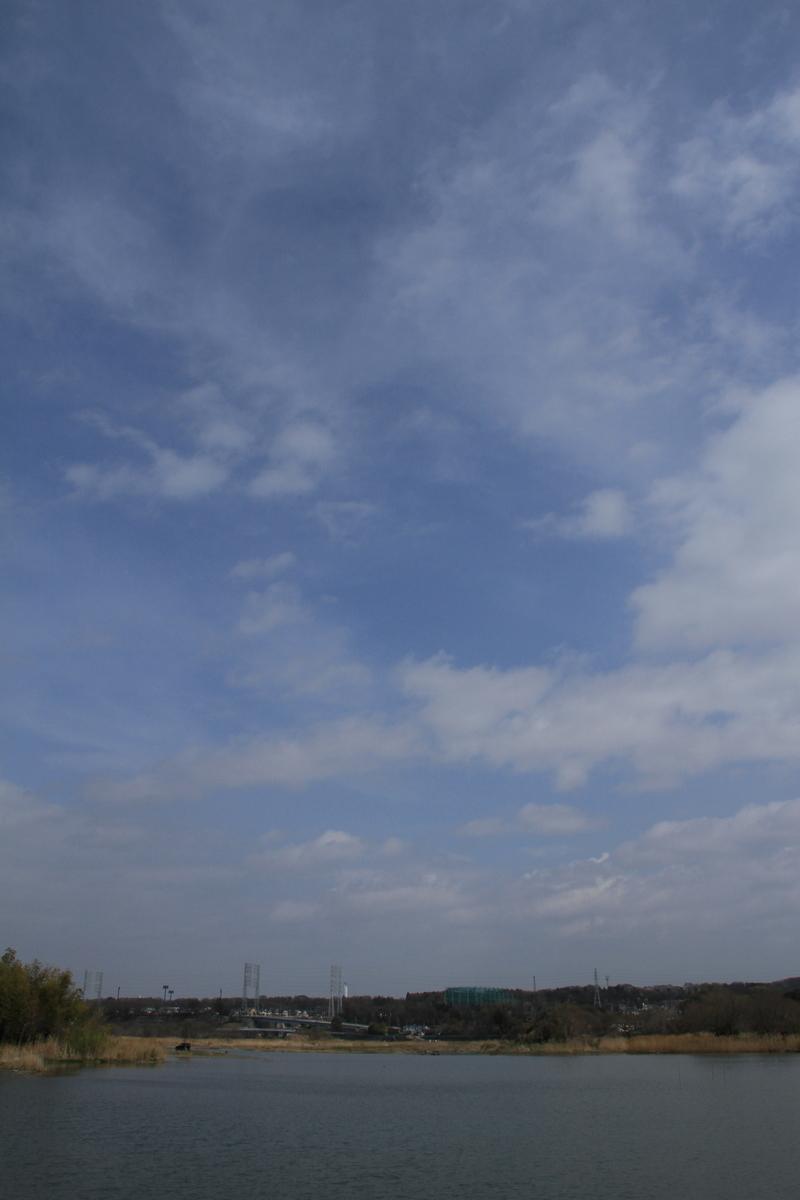 f:id:kumowasukidesuka:20210321165619j:plain