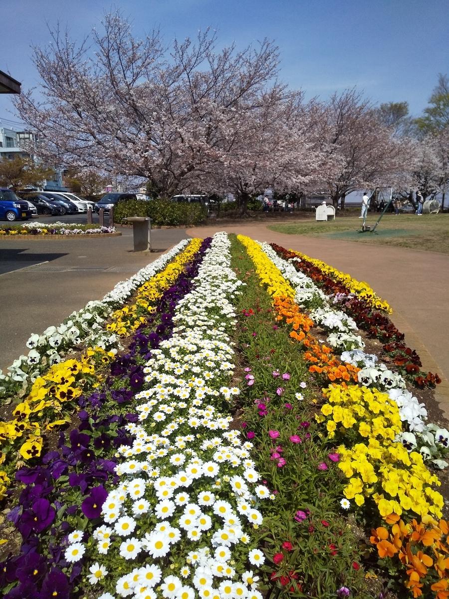 f:id:kumowasukidesuka:20210328113519j:plain