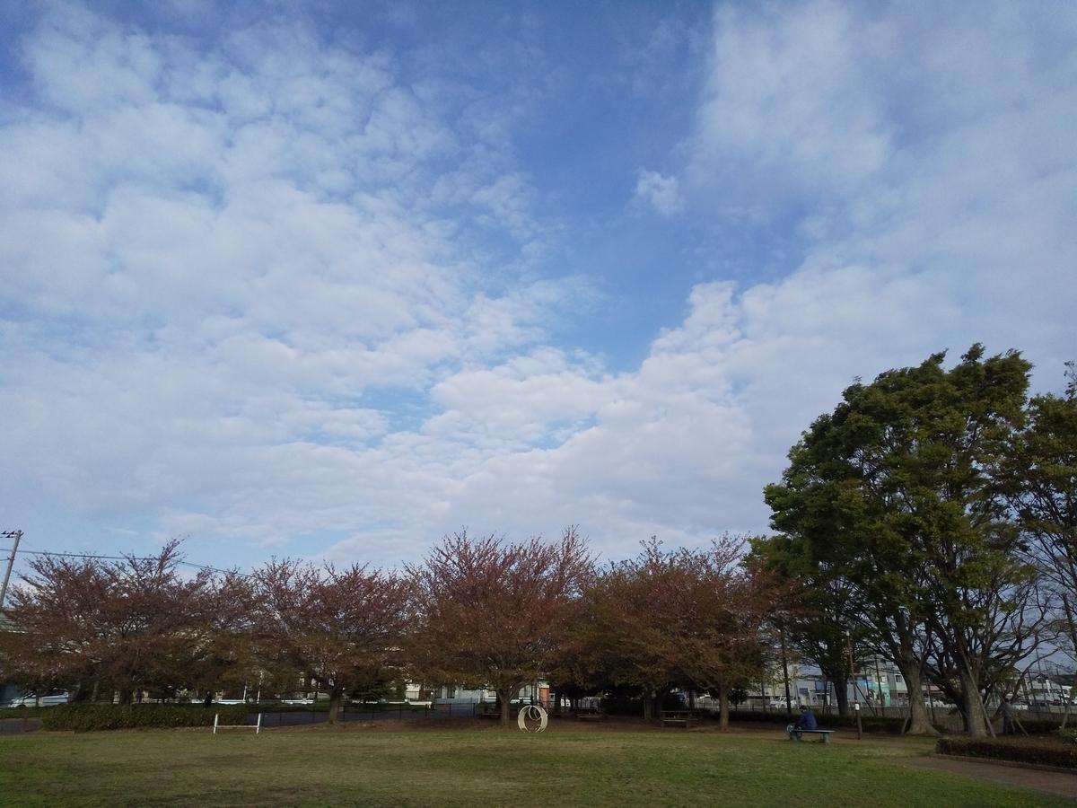 f:id:kumowasukidesuka:20210410181020j:plain