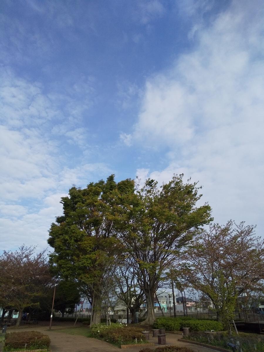 f:id:kumowasukidesuka:20210410183034j:plain
