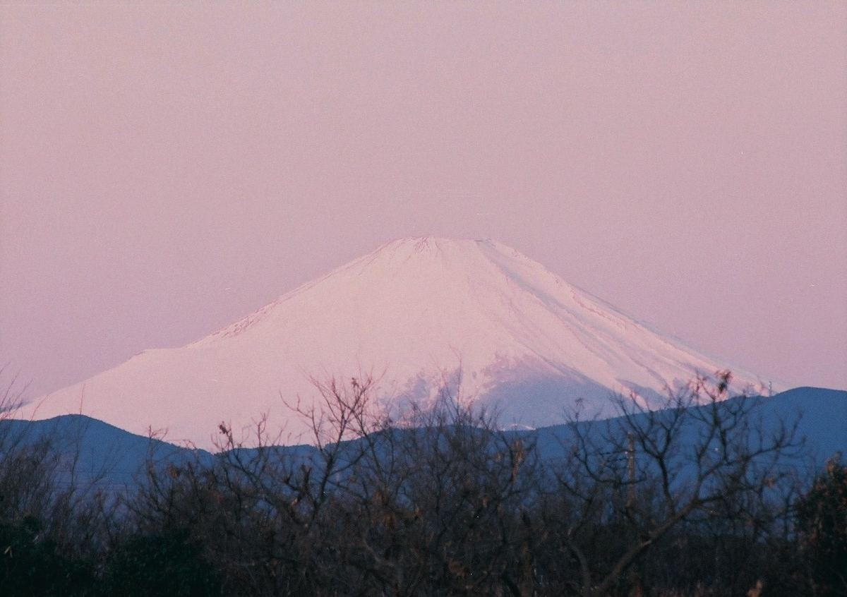 f:id:kumowasukidesuka:20210419191337j:plain