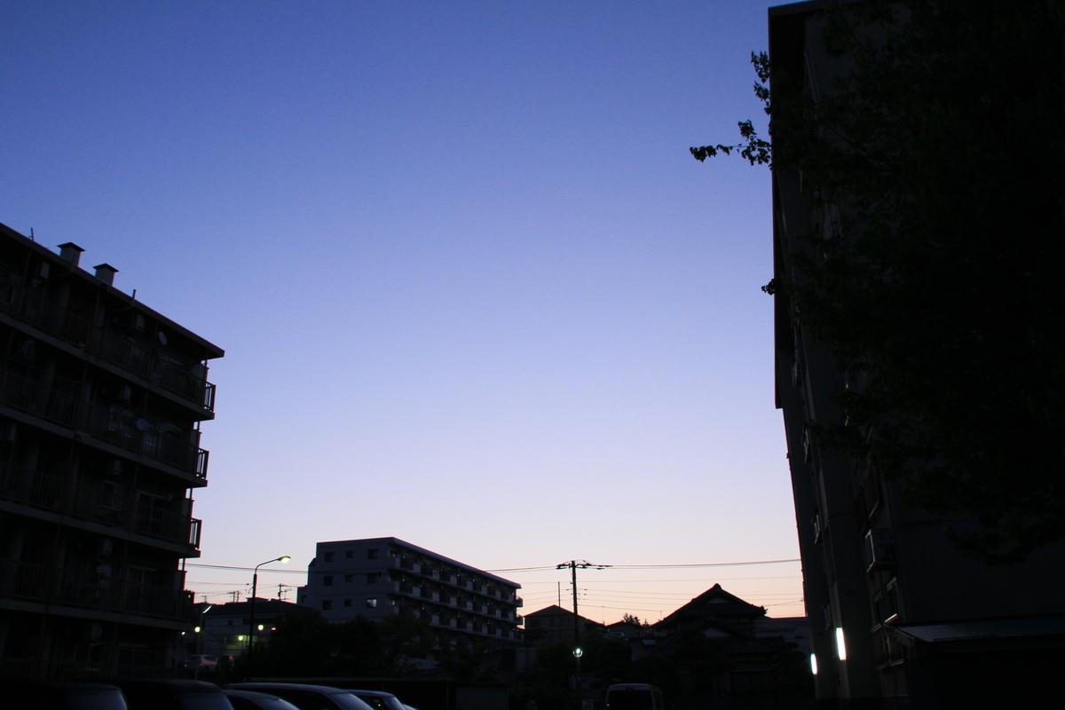 f:id:kumowasukidesuka:20210427220750j:plain