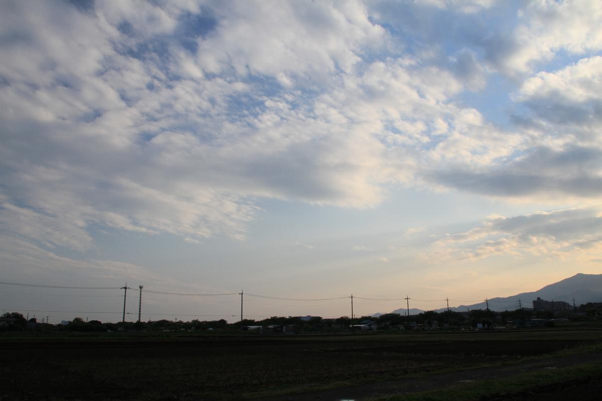 f:id:kumowasukidesuka:20210501191435j:plain