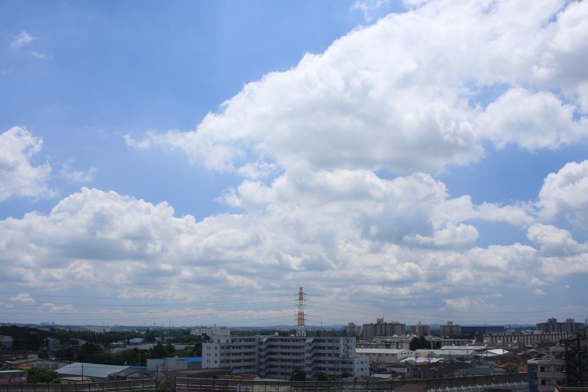 f:id:kumowasukidesuka:20210523215324j:plain