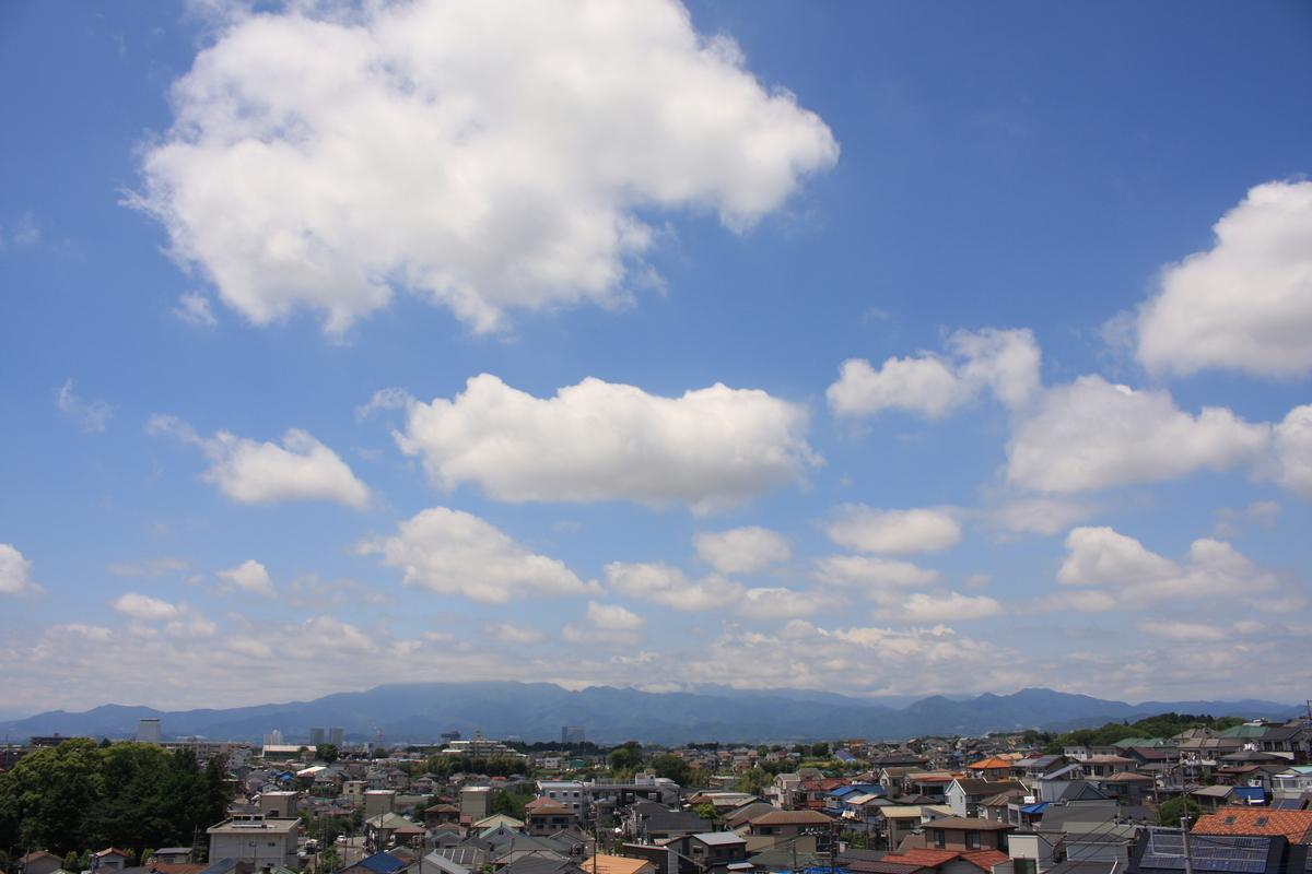 f:id:kumowasukidesuka:20210523220241j:plain