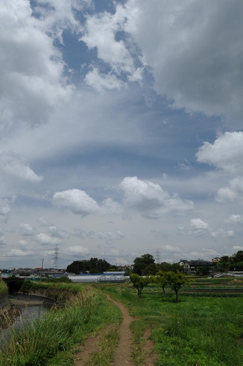 f:id:kumowasukidesuka:20210607205432j:plain
