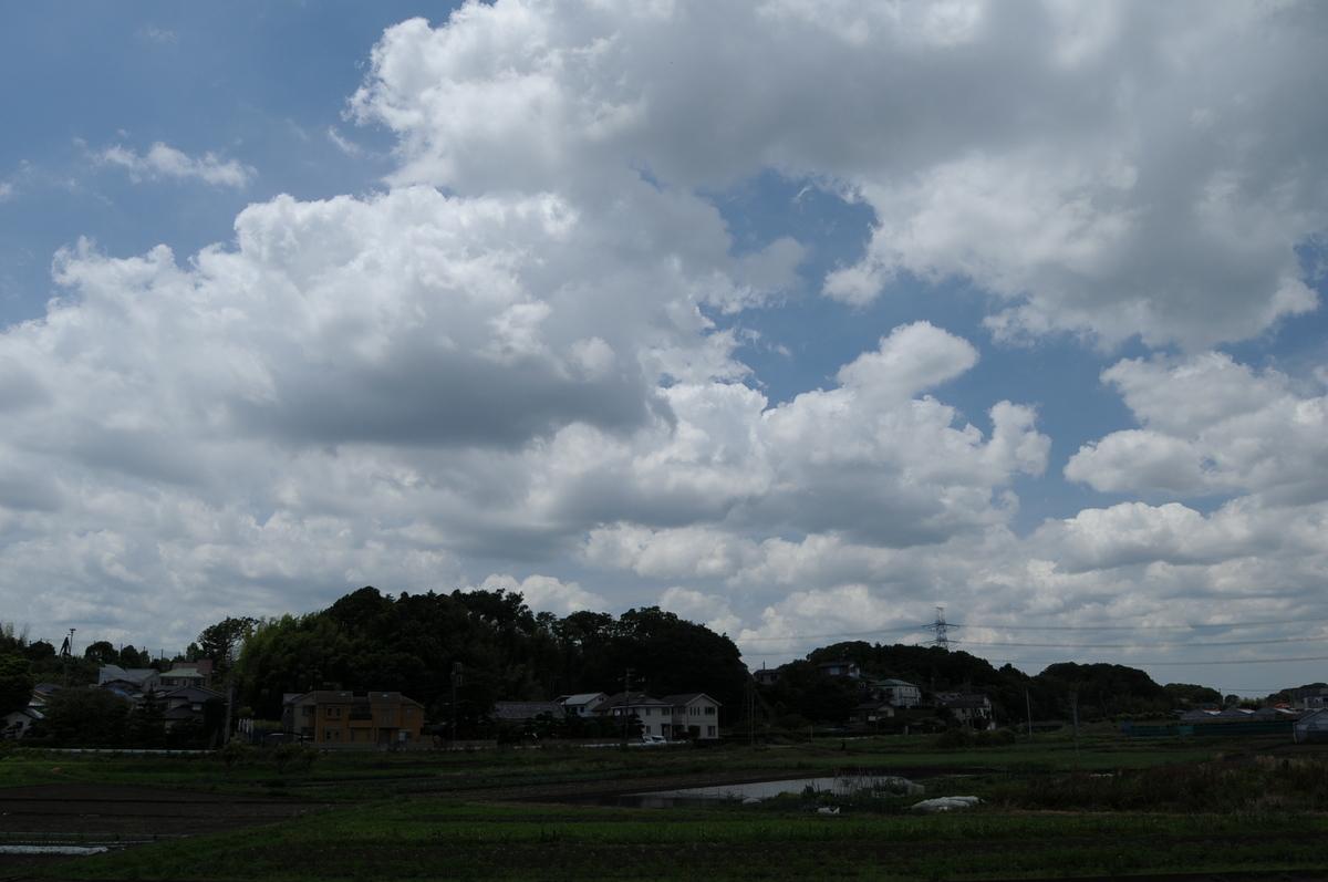 f:id:kumowasukidesuka:20210607205914j:plain