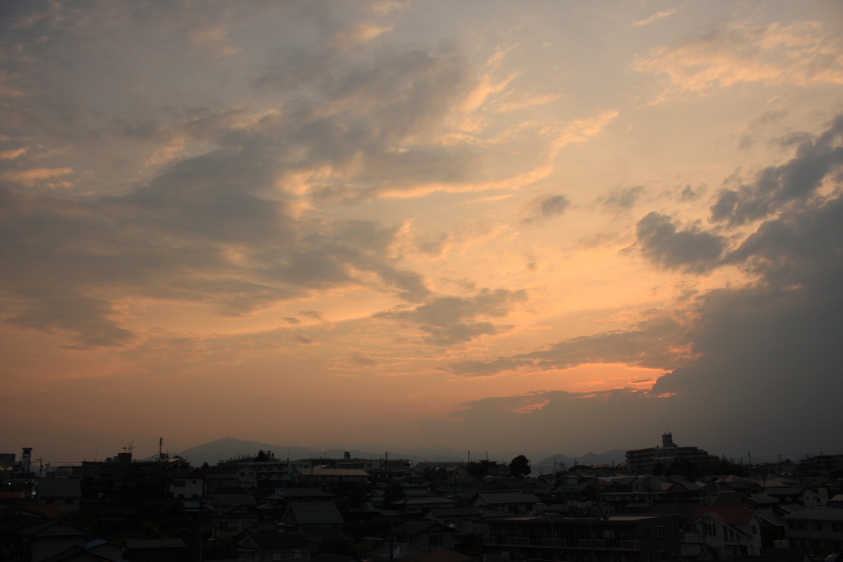 f:id:kumowasukidesuka:20210609211617j:plain