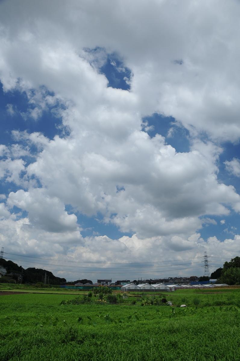 f:id:kumowasukidesuka:20210721185244j:plain