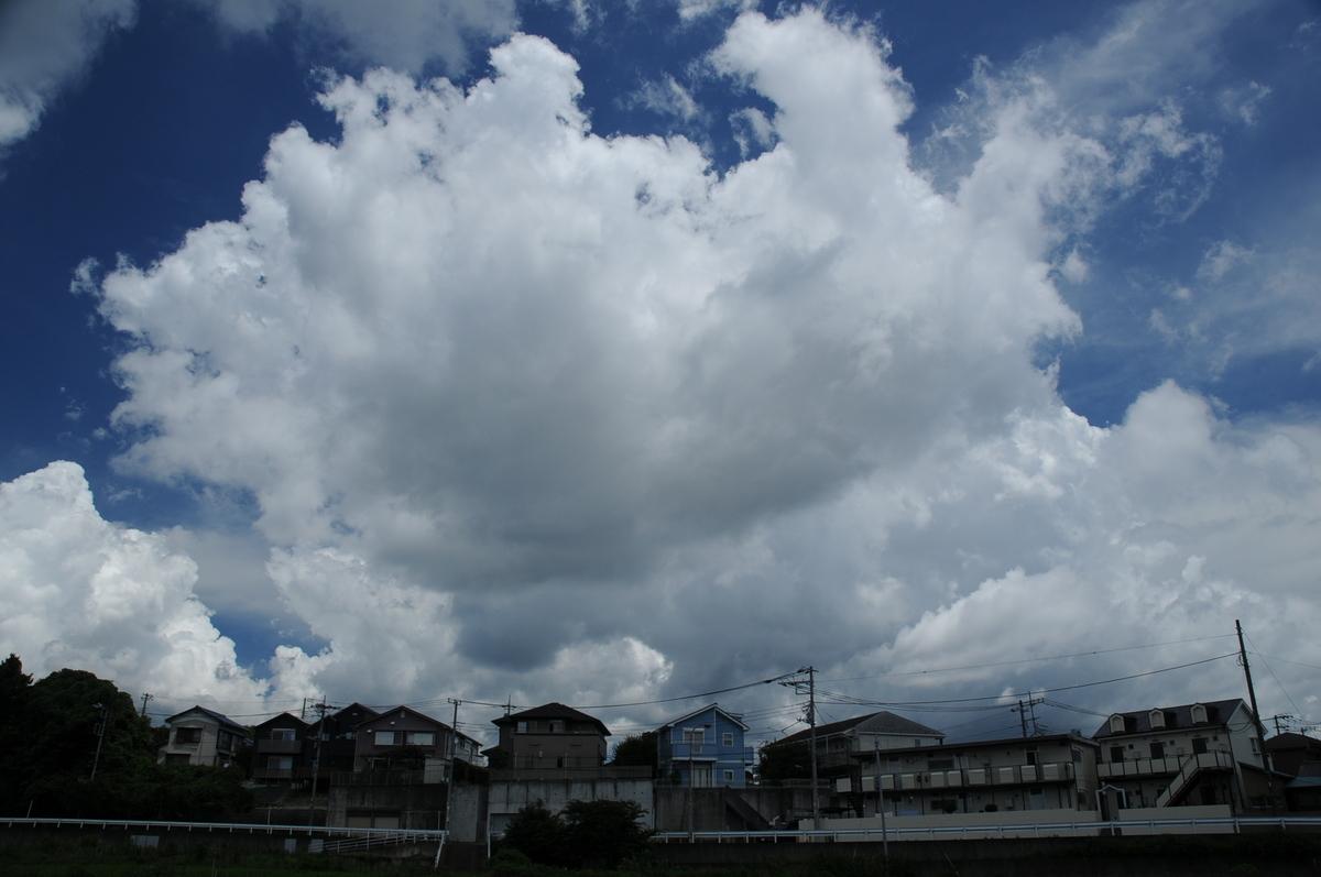 f:id:kumowasukidesuka:20210721185350j:plain