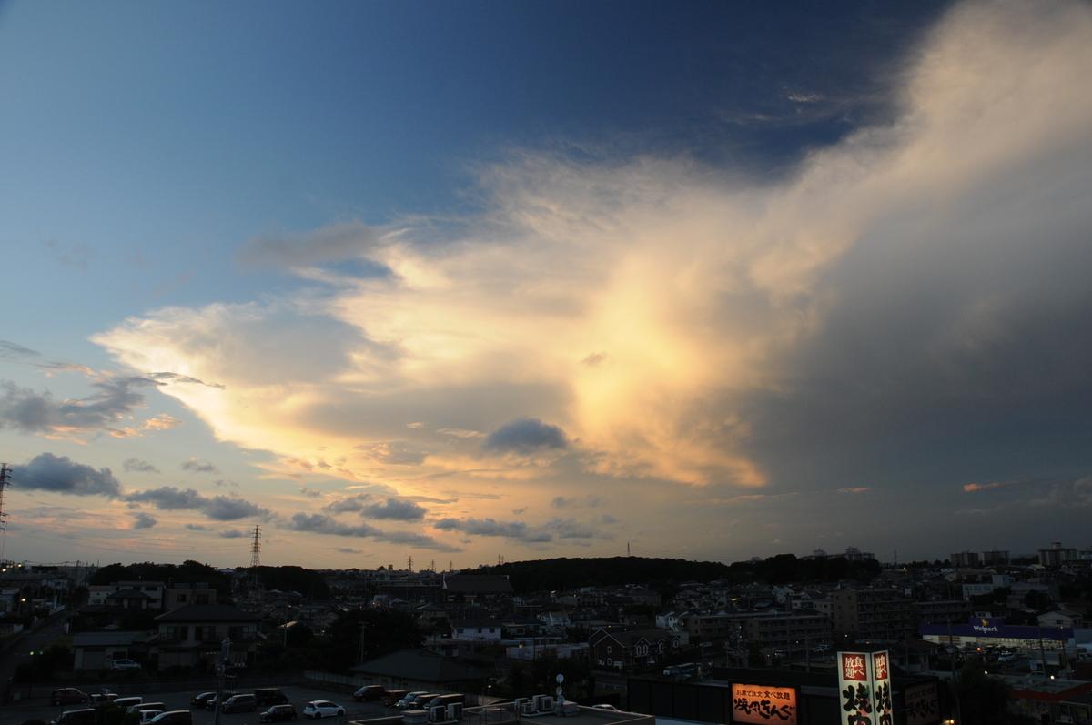 f:id:kumowasukidesuka:20210725160011j:plain