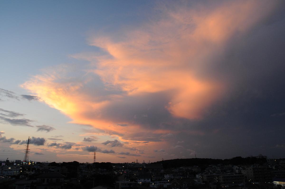 f:id:kumowasukidesuka:20210725160340j:plain