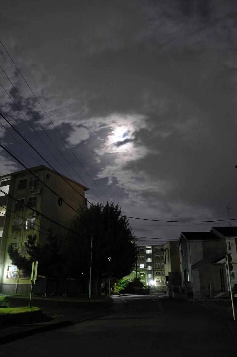f:id:kumowasukidesuka:20210822221717j:plain