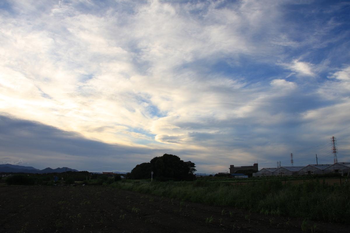 f:id:kumowasukidesuka:20210826203906j:plain