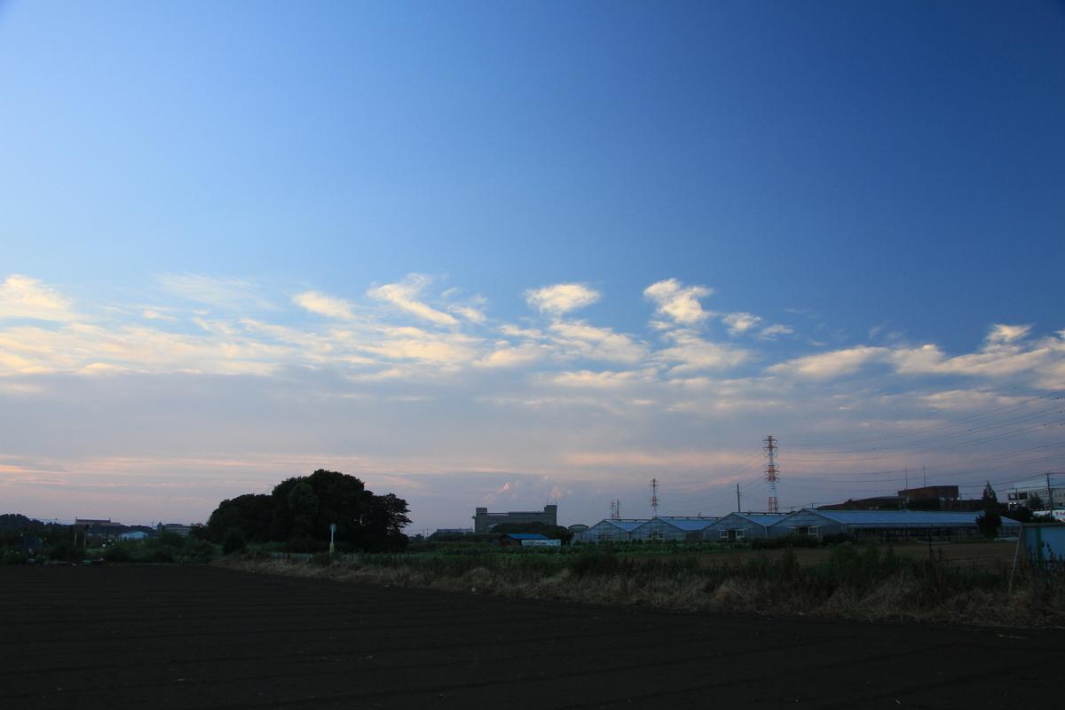 f:id:kumowasukidesuka:20210830211925j:plain