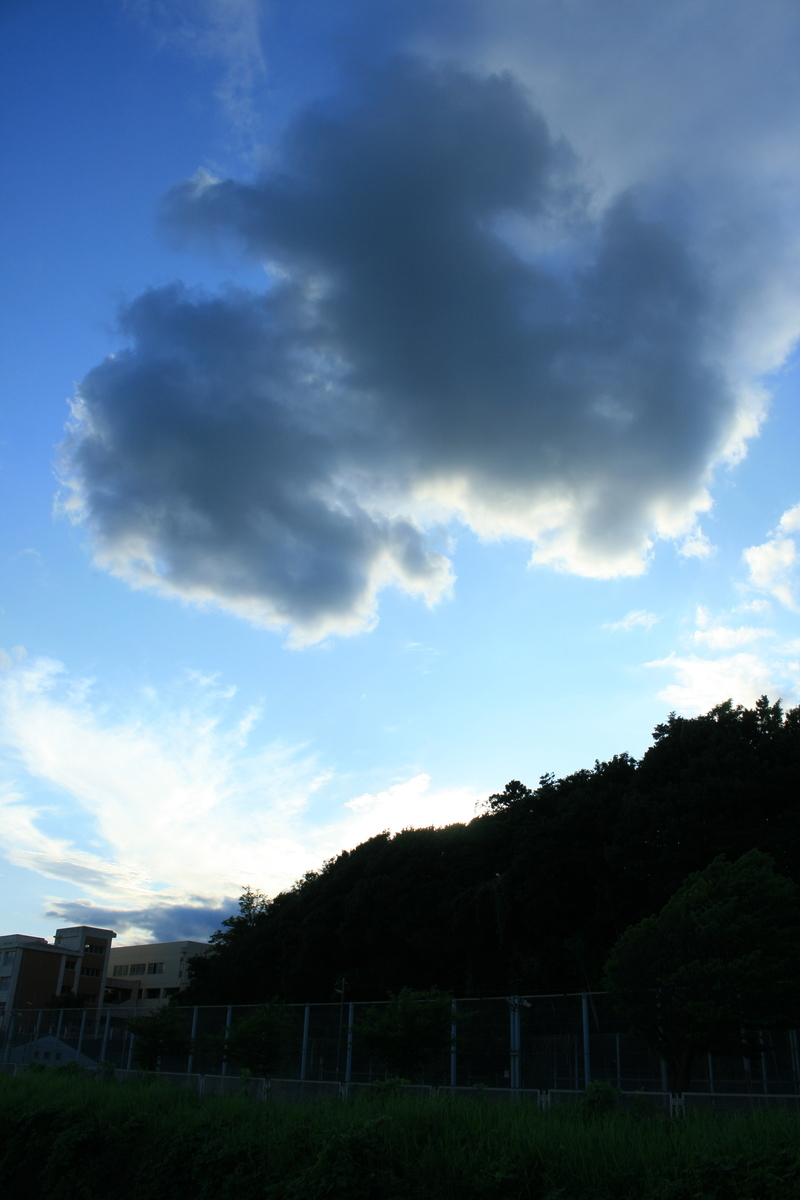f:id:kumowasukidesuka:20210904192621j:plain
