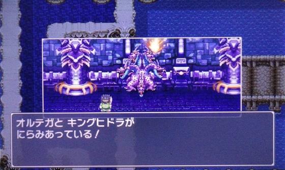 f:id:kumu:20101011014338j:image