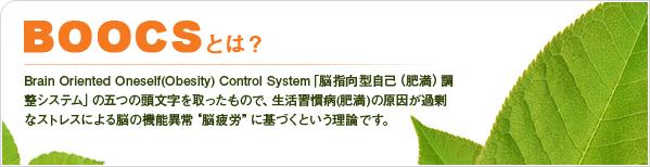 f:id:kun-maa:20130226193031j:plain