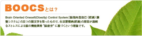 f:id:kun-maa:20130703214611j:plain