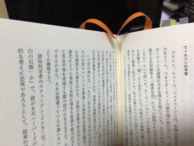 f:id:kun-maa:20150520203814j:plain