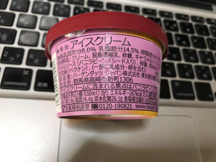 f:id:kun-maa:20170805123123j:plain