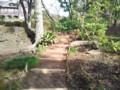 [うみねこ]旧古河庭園11