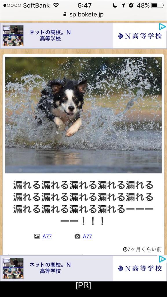 f:id:kuniikatsuhiro921:20170512060618p:image