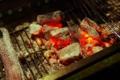 BBQ~炭火