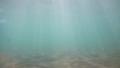 吉浜 海の中