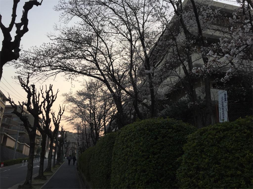 f:id:kunohetou:20180326002549j:image