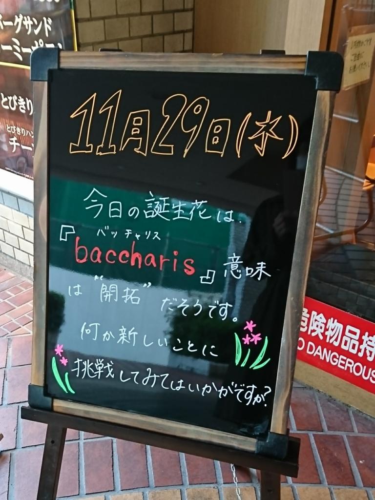 f:id:kunoichilady:20171129185931j:plain