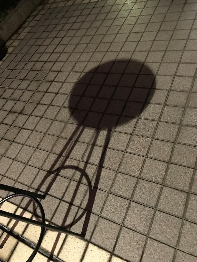 f:id:kunoichilady:20180803144450j:image