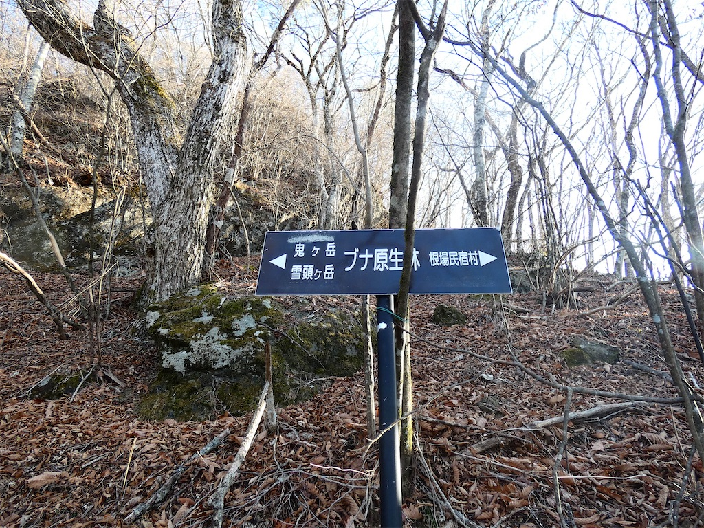 f:id:kunpu3684:20201214224847j:image