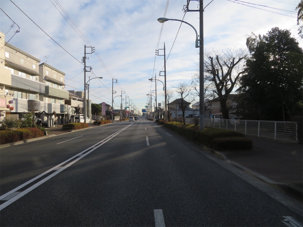 f:id:kunpu3684:20210123170053j:image