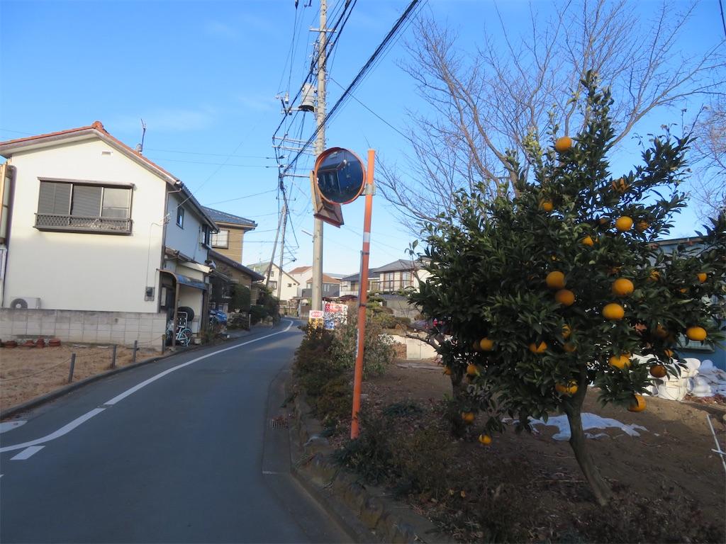 f:id:kunpu3684:20210123170154j:image
