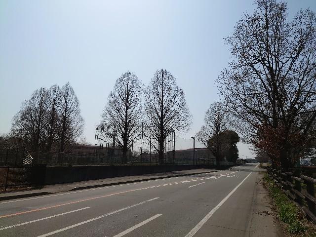 f:id:kunta-kinya:20210310175333j:image
