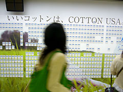 COTTON USAの広告