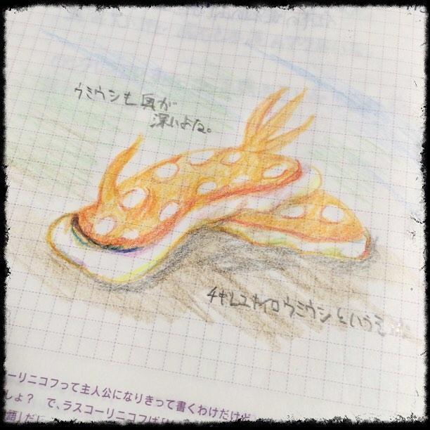 f:id:kuragestmimu:20161026010107j:plain