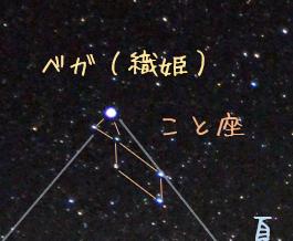 f:id:kurakurakurarin1991:20190530191758p:plain