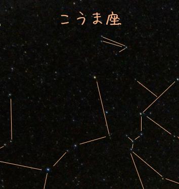 f:id:kurakurakurarin1991:20190914104813p:image