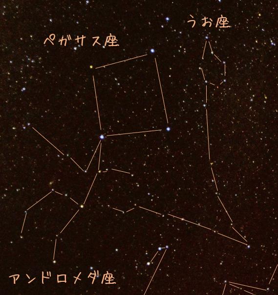 f:id:kurakurakurarin1991:20190926184532p:image