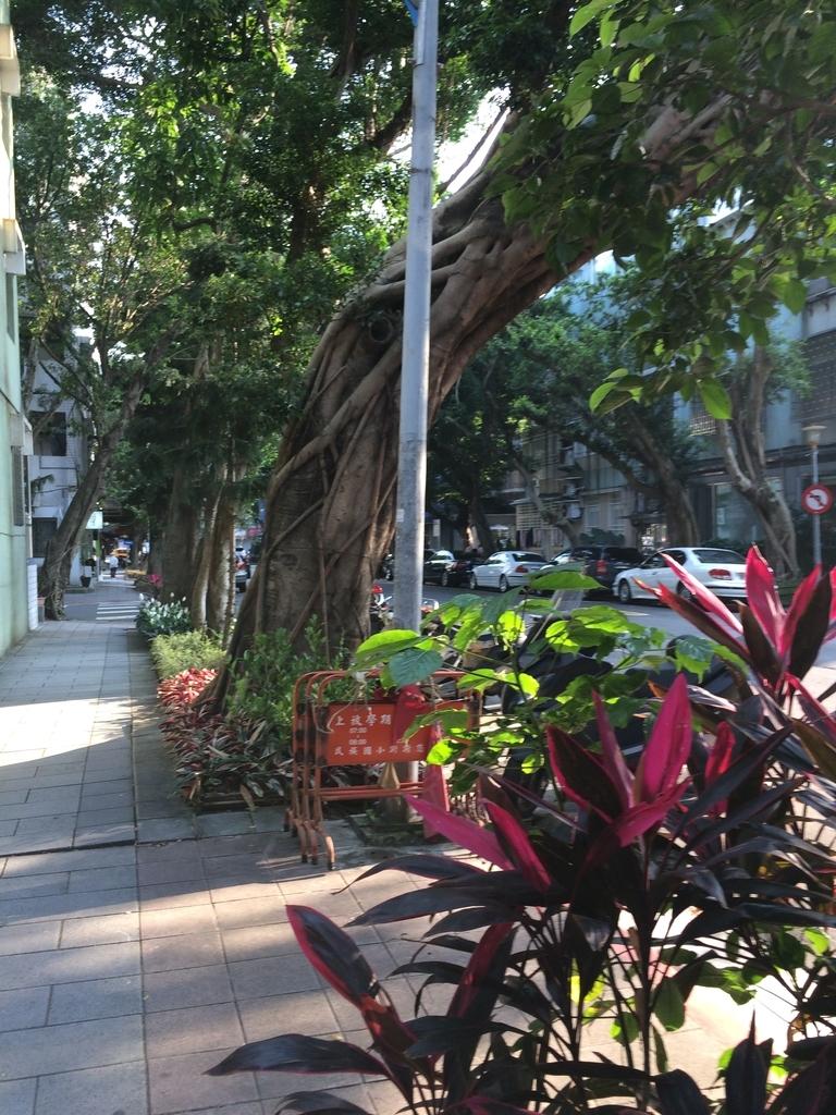 f:id:kuramae-taiwan:20181224172801j:plain